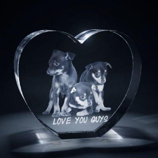 3DCrystal Heart Pets Gift