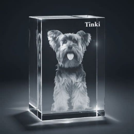 3DCrystal rectangle vertical pet