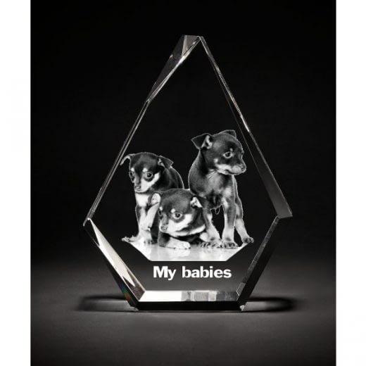 3DCrystal Prestige Pets gift
